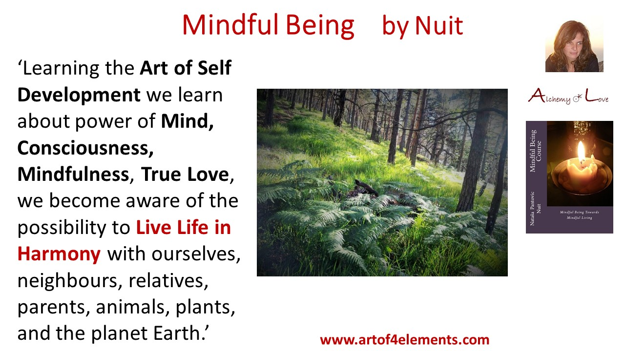 Mindful Being Mindfulness Training Quote by Nuit about Life in Harmony